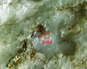 gold_pepr